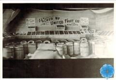 United Fruit Co.